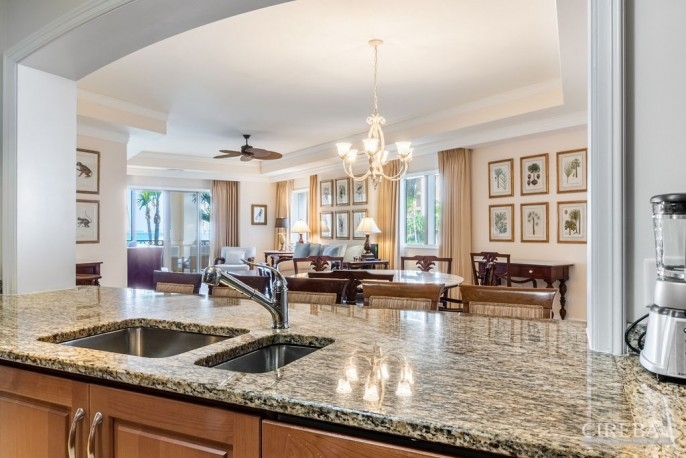 THE RITZ-CARLTON PRIVATE RESIDENCE #206 - Image 10